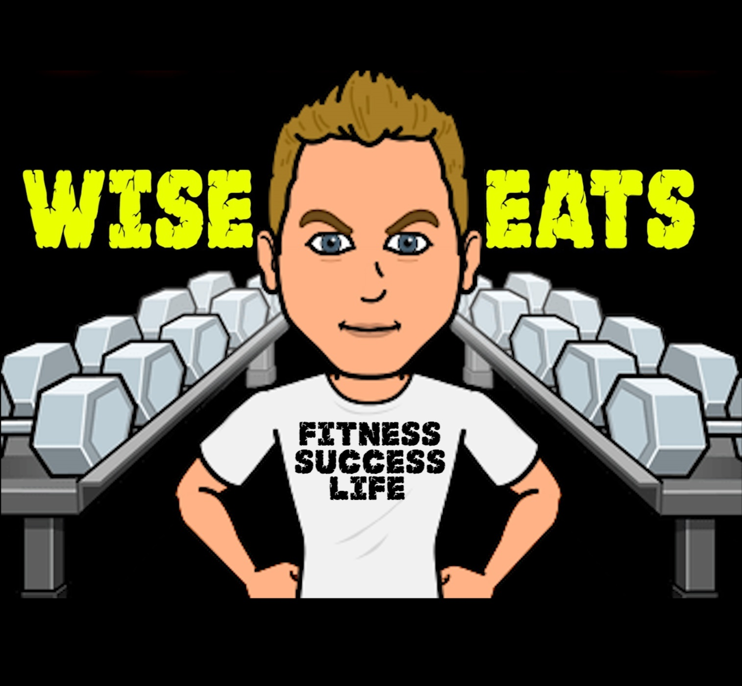 Wise Eats | Recipes for Fitness. Recipes for Life. show art