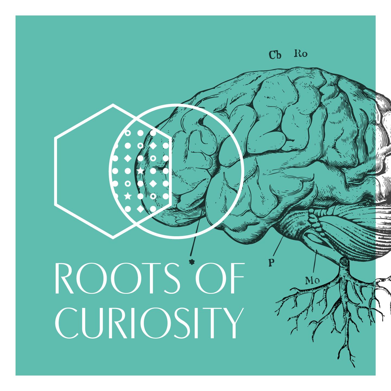 Raízes da Curiosidade: Tempo de Ciência e Arte, à Conversa com Madalena Wallenstein, a Curadora do Projecto [PT]