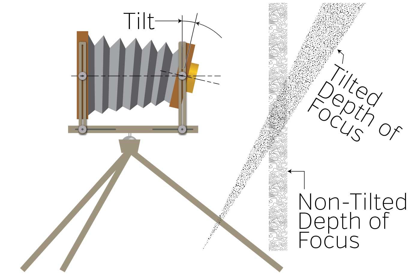 view camera tilt