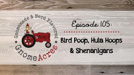 Artwork for Ep 105: Bird Poop, Hula Hoops & Shenanigans