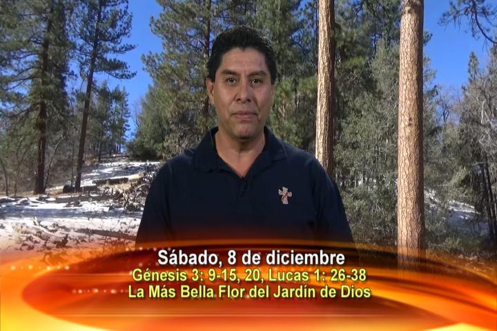 """Artwork for Dios te Habla con Dn. Alfredo Vargas;  Tema: """"La más bella flor del jardín de Dios"""""""