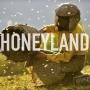 Artwork for Honeyland