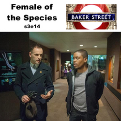 s3e14 Female of the Species