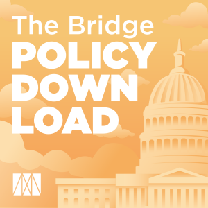 The Bridge Policy Download