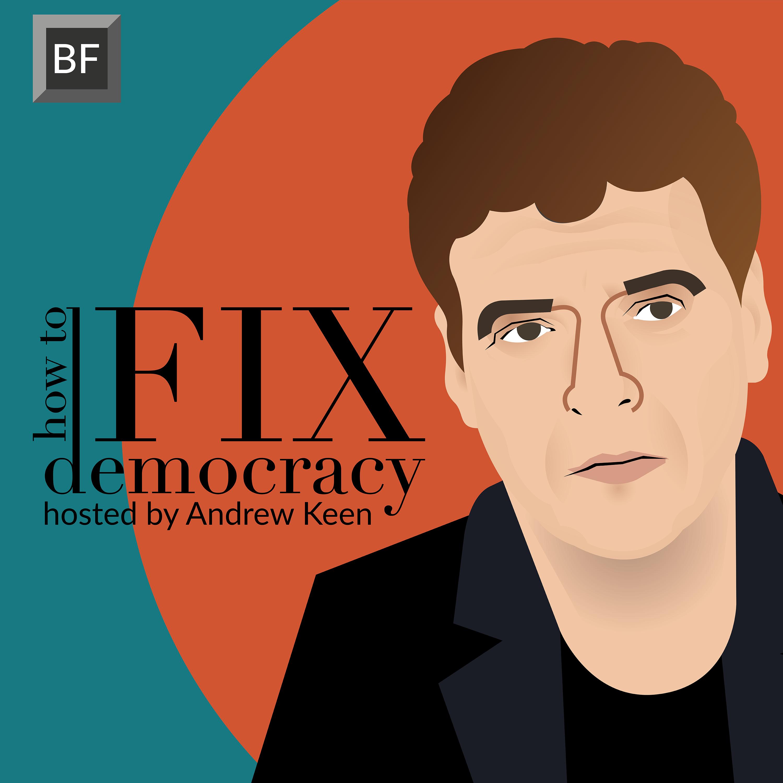 How to Fix Democracy show art