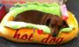 Artwork for The Hate Bus Ep. 76: I Love Hotdog