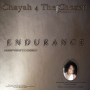 Artwork for ENDURANCE