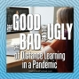 Artwork for The Good, The Bad, and The Ugly of Distance Learning in a Pandemic
