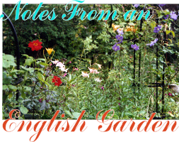 August 2006 - Notes From An English Garden