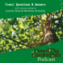 Artwork for Trees: Questions & Answers