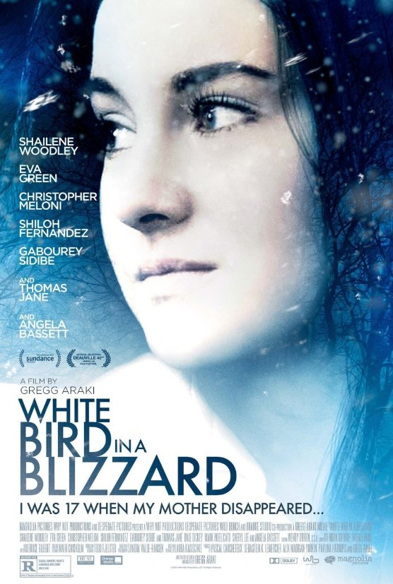 Ep. 49 - White Bird In A Blizzard (The Burning Plain vs. Winter's Bone)
