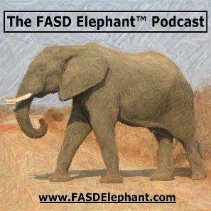 FASD Elephant (TM) #007: The FASD Wheel (TM) - Brain Functioning