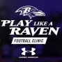 Artwork for The Baltimore Ravens; Play Like A Raven, Ravens Foundation, and a look into 2017 (E-39)