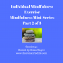 Artwork for 41: Individual Mindfulness Exercise - Mindfulness Mini-Series Part 2 of 3
