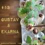 Artwork for 13. Gustav & Ekarna. Gro ekollon och odla ek, steg för steg.