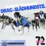 Artwork for Avsnitt 25 - Slädhundstil med Cari Rörström