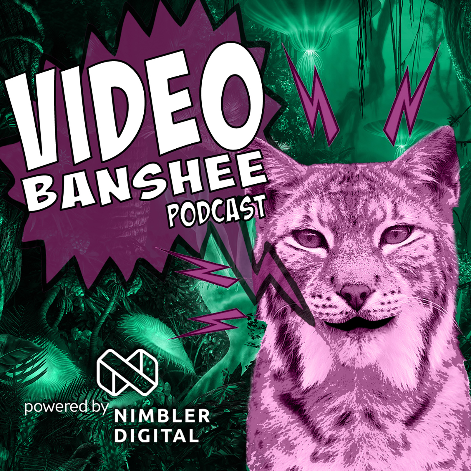 The Video Banshee Podcast show art