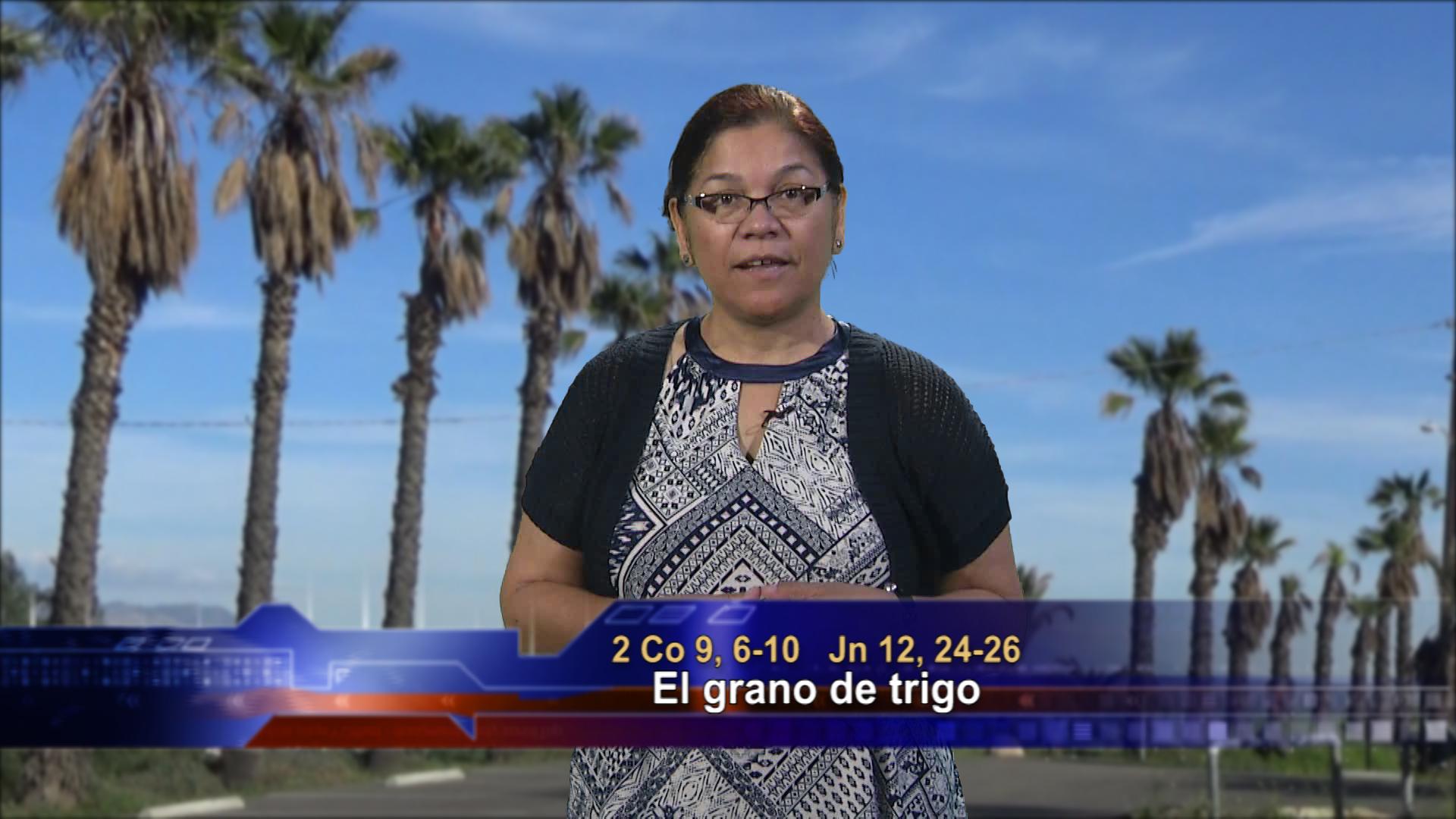 Artwork for Dios te Habla con Angela Valencia;  Tema de hoy: El grano de trigo