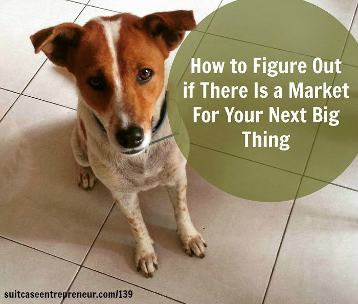 [TSE 139] How to Figure Out if There Is a Market For Your Next Big Thing