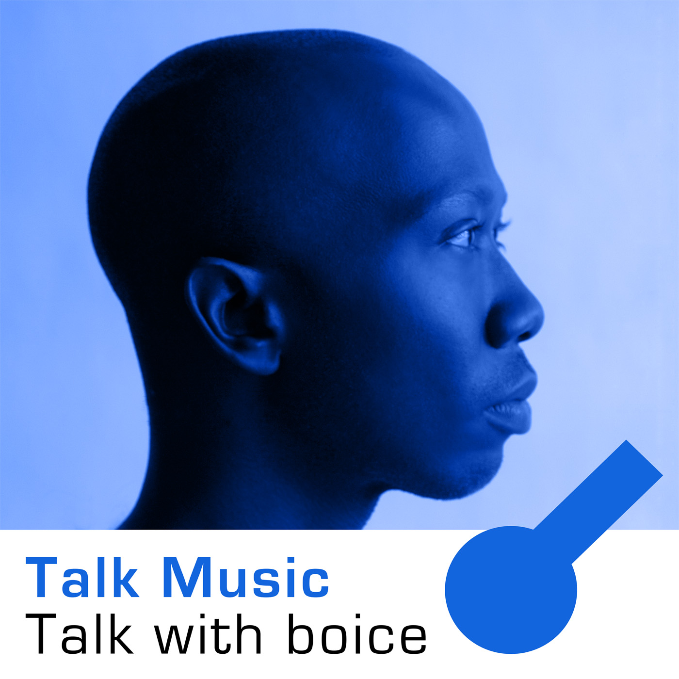 Talk Music Talk with boice show art
