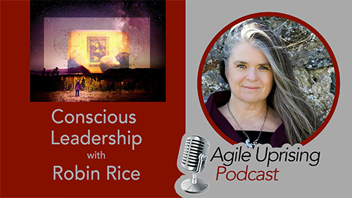 Conscious Leadership w Robin Ric