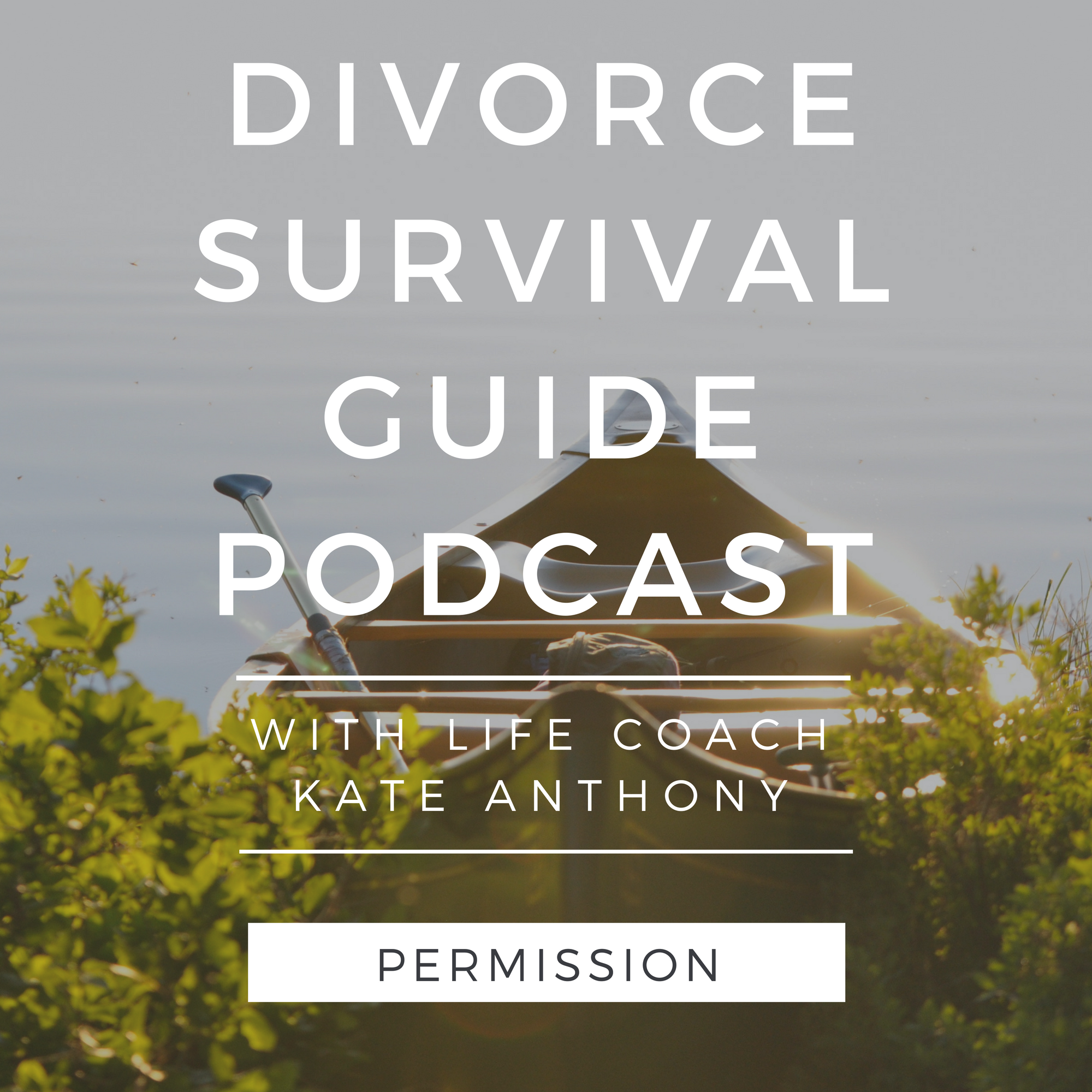 The Divorce Survival Guide Podcast - You are allowed to leave