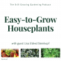Artwork for SG598: Top Easy-to-Grow Houseplants with Lisa Eldred Steinkopf