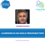 Artwork for 87: Damien Woods – Learning in an Agile Organisation
