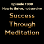 Artwork for Episode #039 - How to Thrive, Not Just Survive