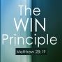 Artwork for The Win Principle