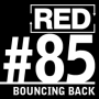 Artwork for RED 085: How To Get Back On Your Feet (After A Business Disaster)