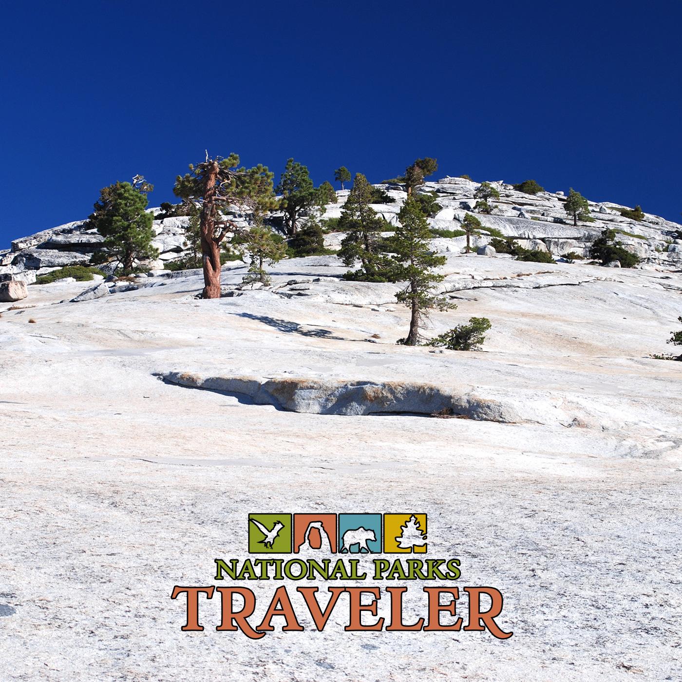 Artwork for National Parks Traveler: Teaching Children Well In National Parks