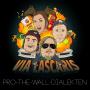 Artwork for Pro-The-Wall-Dialekten