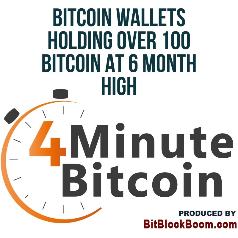 Bitcoin Wallets Holding Over 100 Bitcoin At 6 Month High