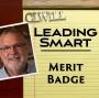 Artwork for Merit Badge