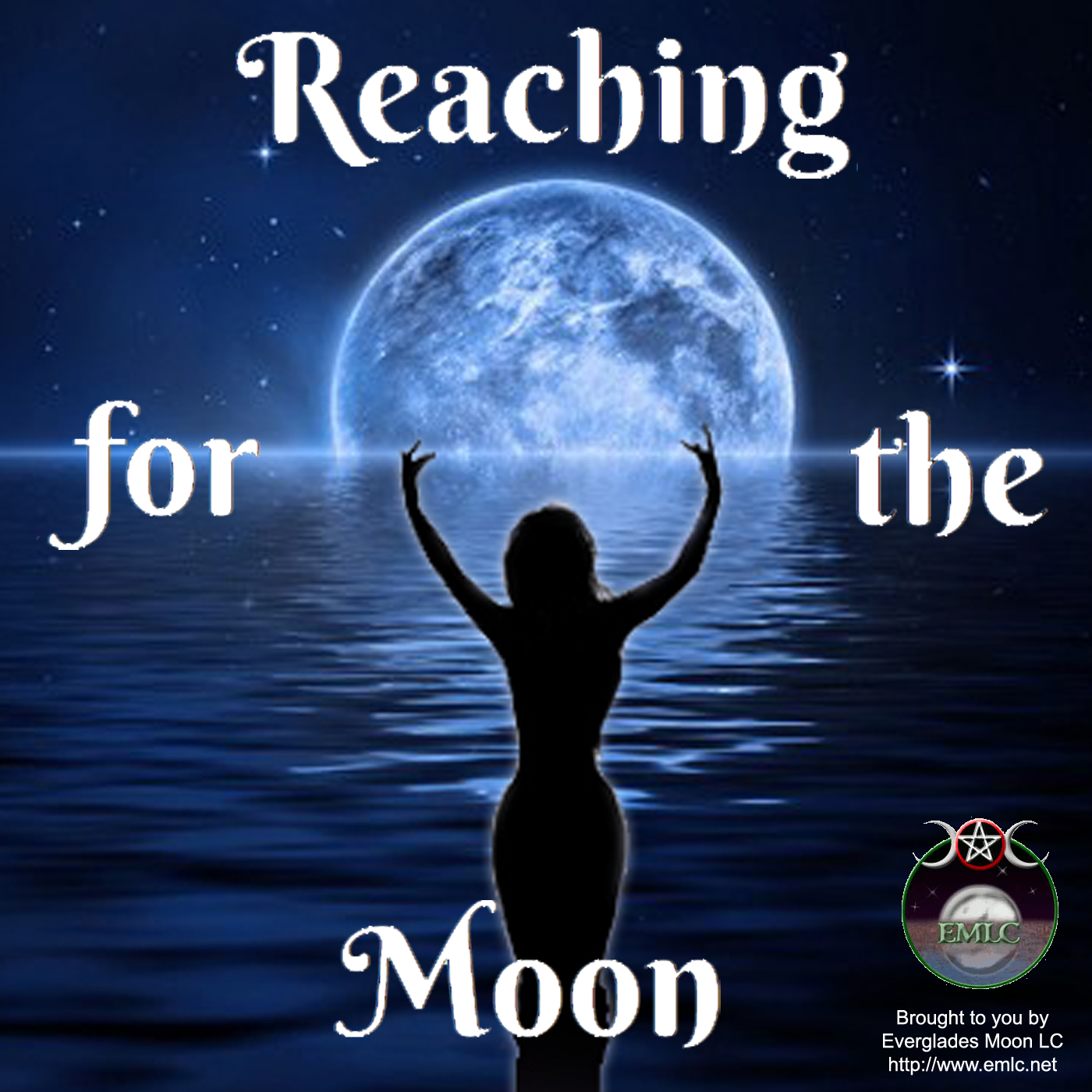 Reaching for the Moon show art