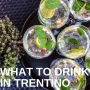 Artwork for How to make the best drinks in Trentino
