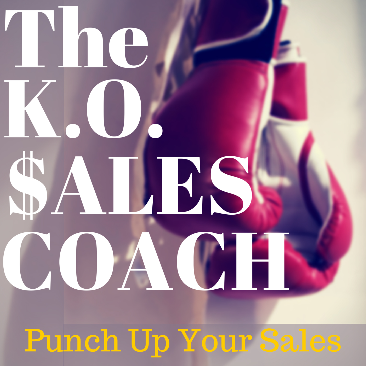KO Sales Coach show art
