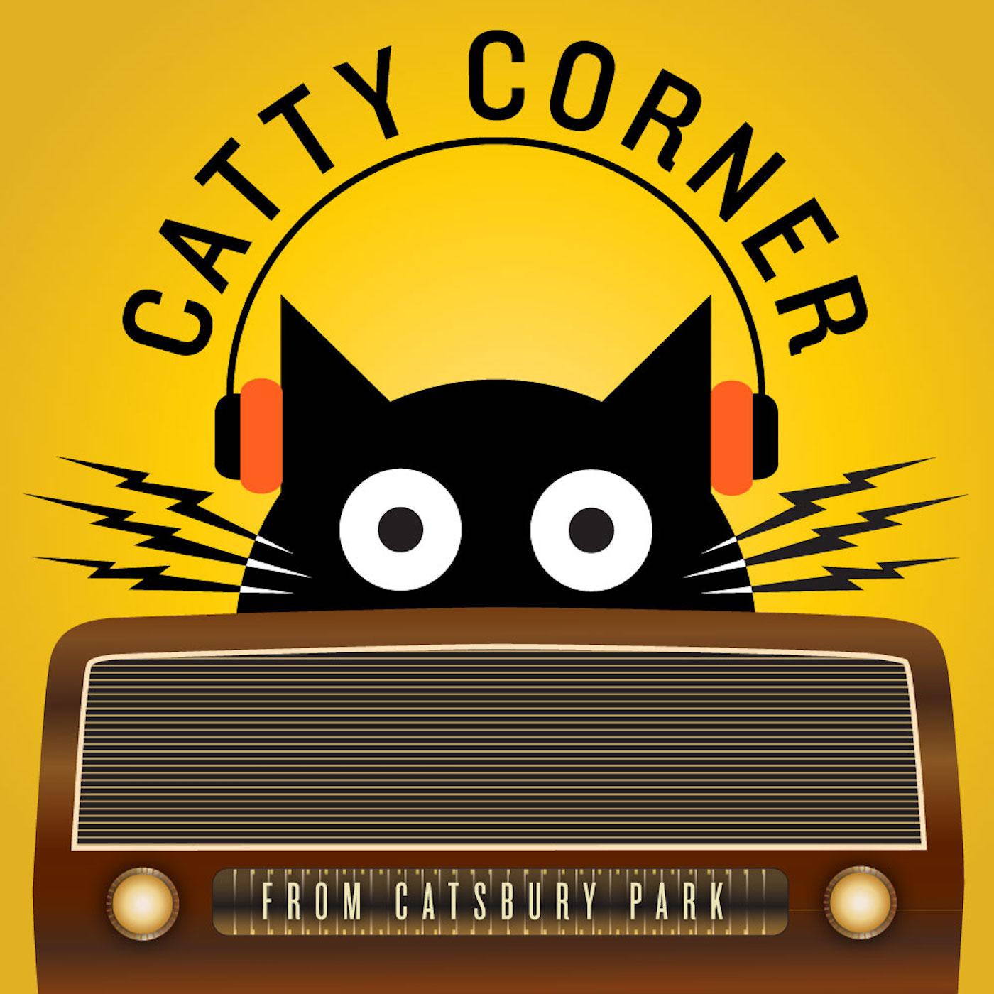 Catty Corner by Catsbury Park show art