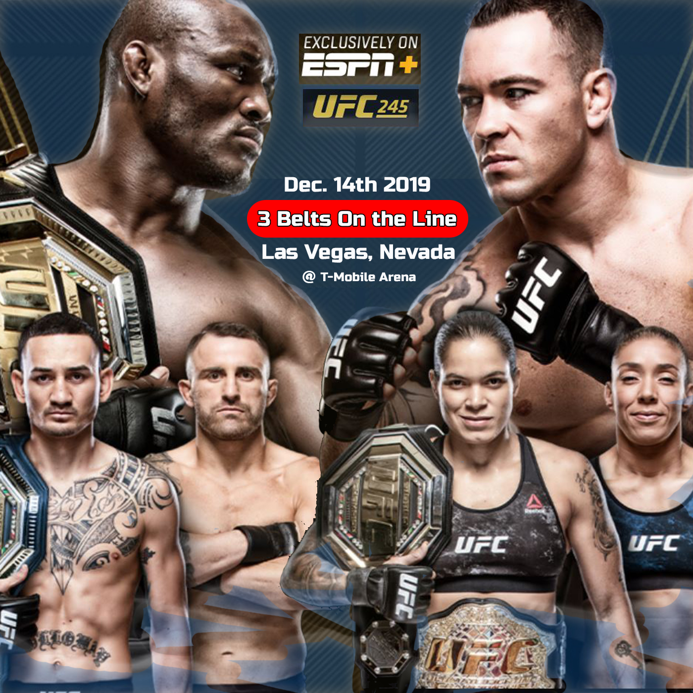 Artwork for UFC 245 closing out 2019 with 3 Championship Titles on the Line