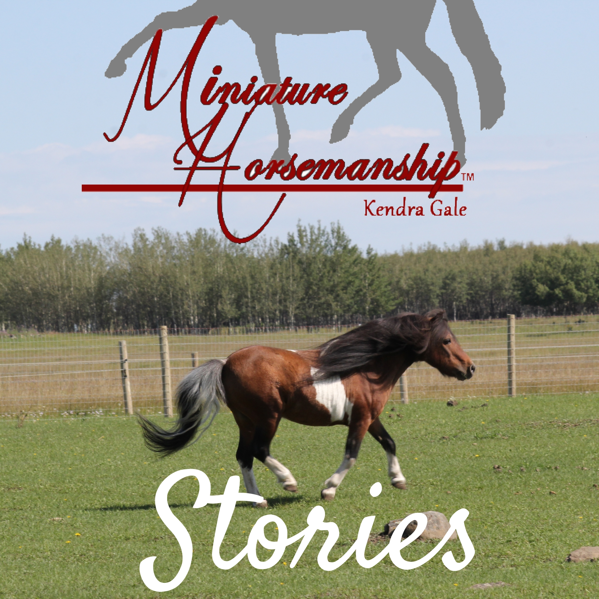 Artwork for Ashley Kline & Apple The Movie Horse - Episode 17