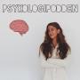 Artwork for 11. Terrordådet: trauma och krishantering fokus vuxna med psykolog Christina Fischler