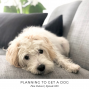 Artwork for 009: Planning to Get a Dog