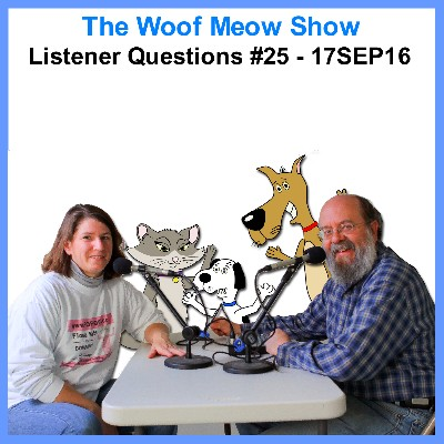 Listener Questions #25