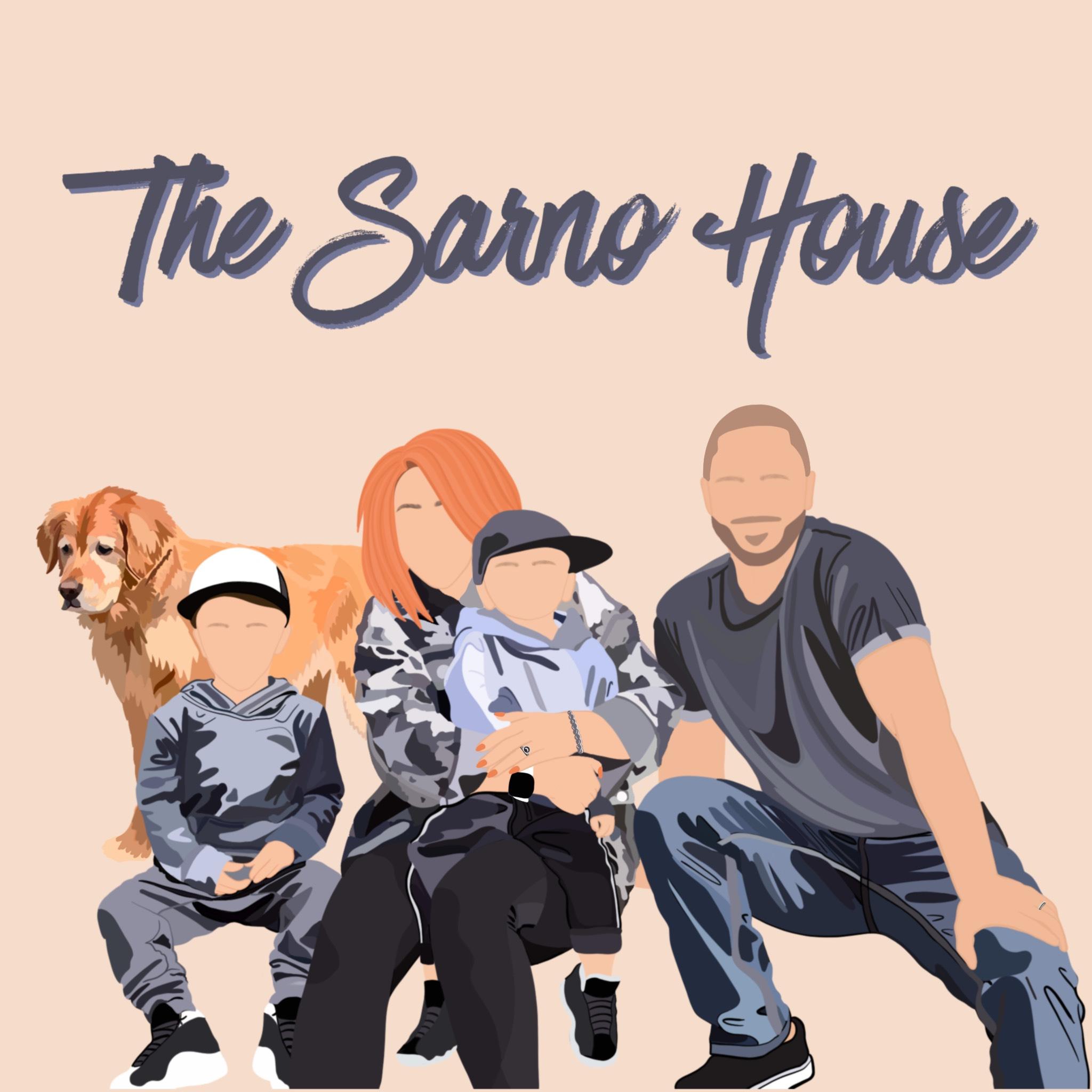 The Sarno House show art