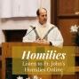 Artwork for Fr. John's Homily - Baptism of the Lord 1/12/2020