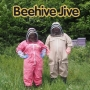 Artwork for Understanding The Beehive Jive - KM134