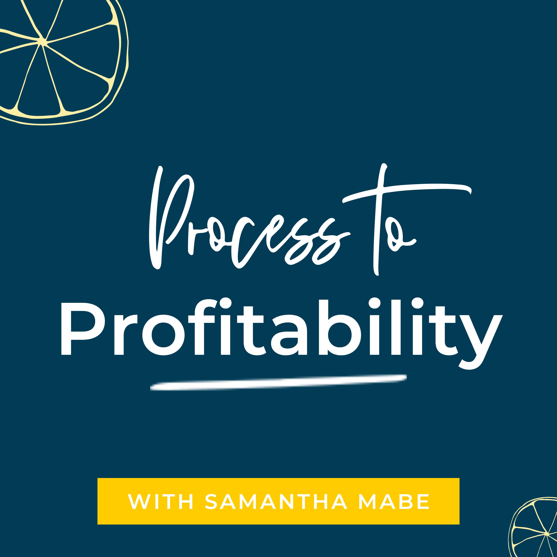 Process to Profitability show art