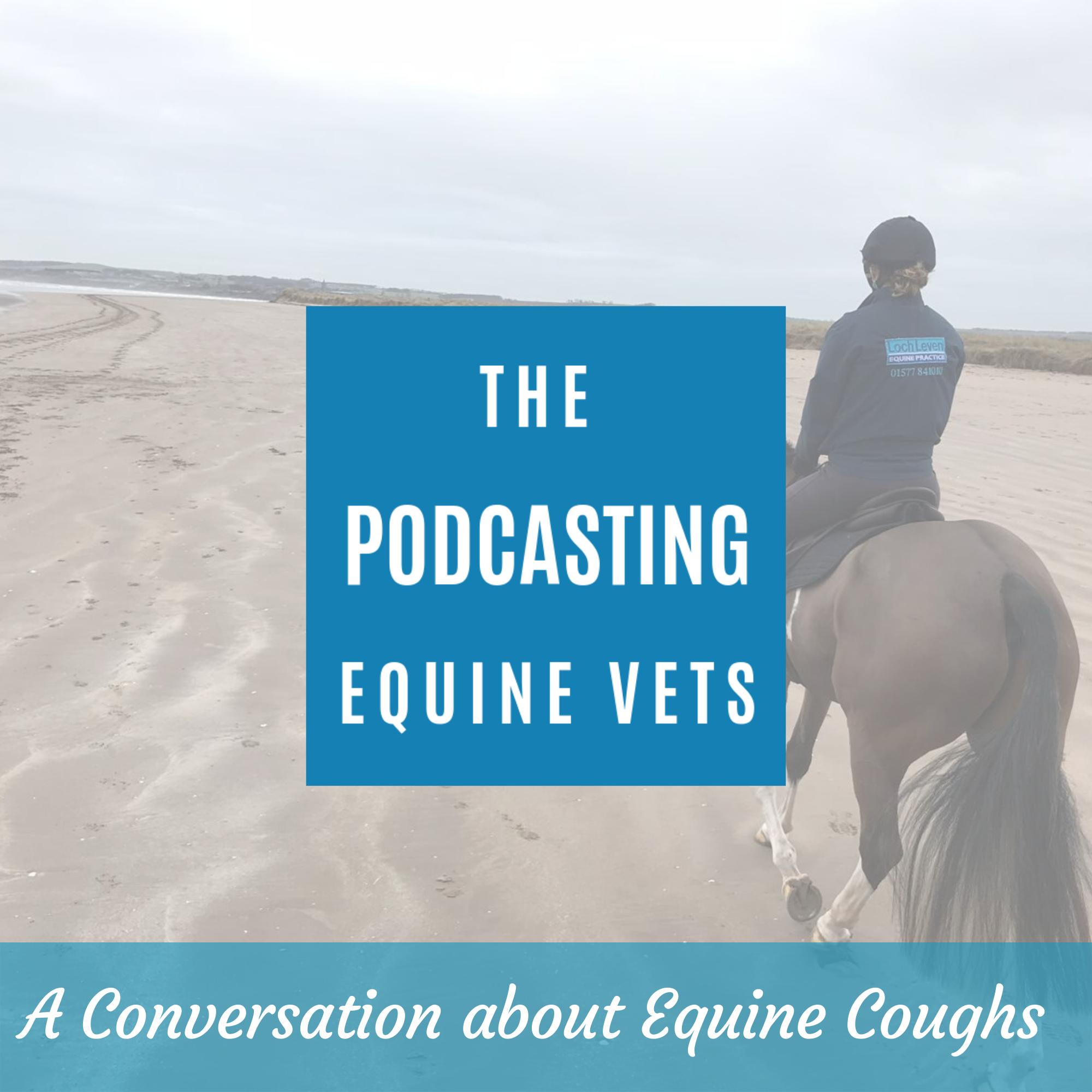 A Conversation About Equine Coughs