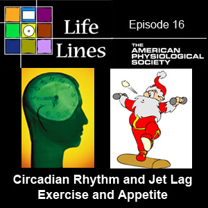 Episode 16: Circadian Rhythm & Jet Lag; Exercise and Appetite